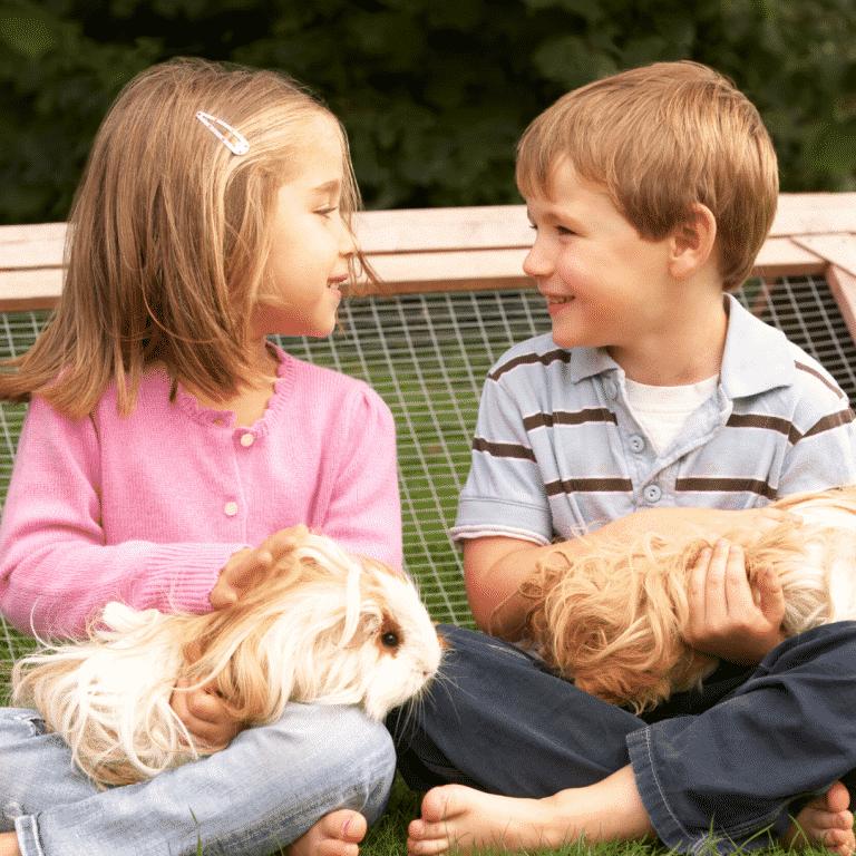 kids holding furry bunnies