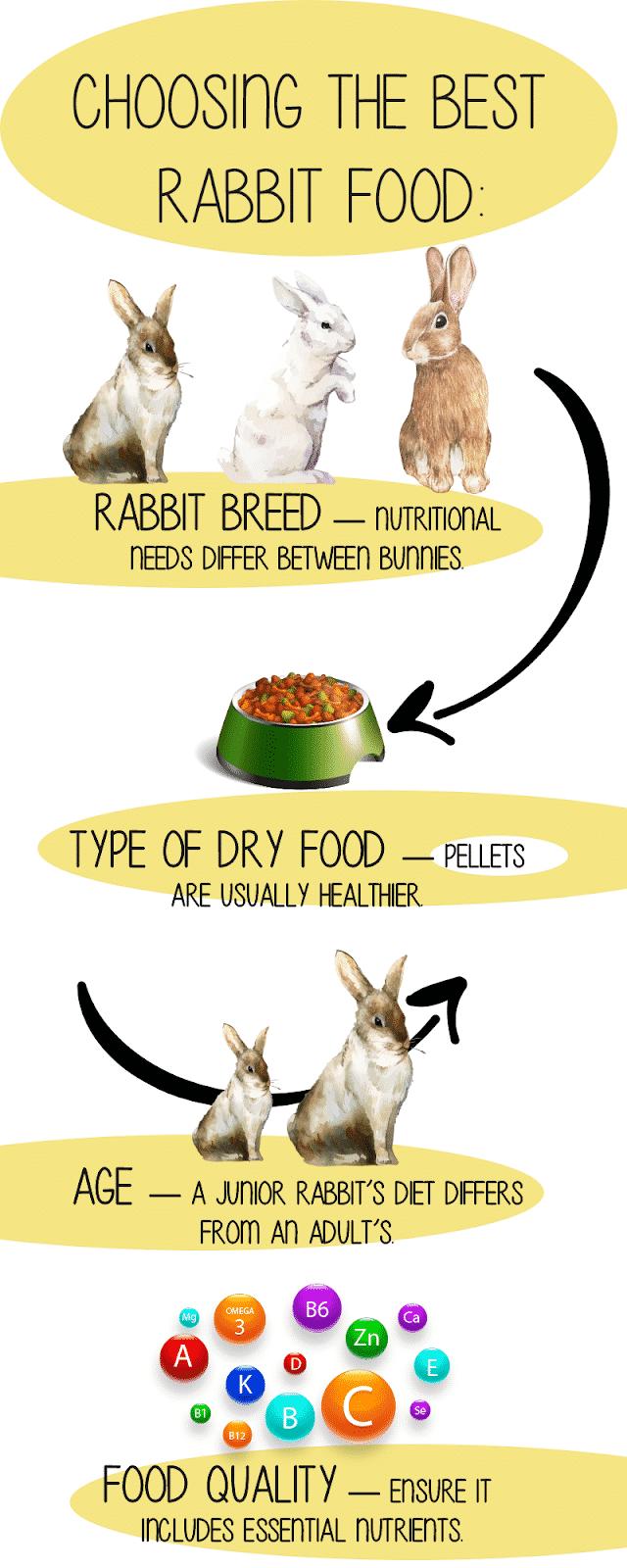The Best Rabbit Food To Buy