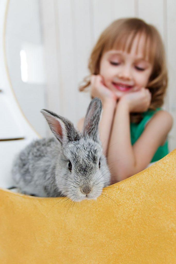 rabbit symbolism little girl happy